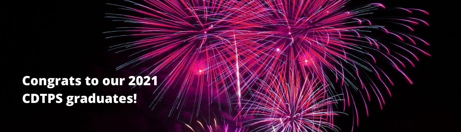 Pink fireworks on black background